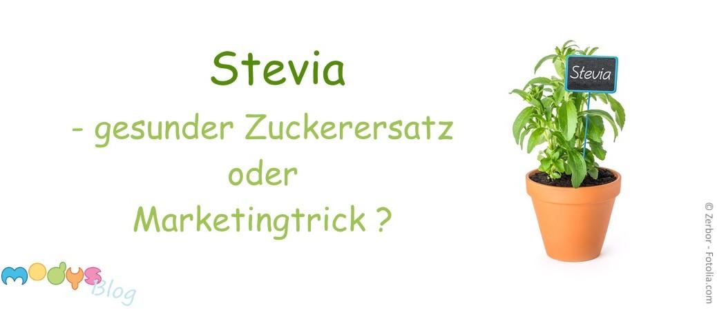 Stevia gesunder Zuckerersatz modys Blog