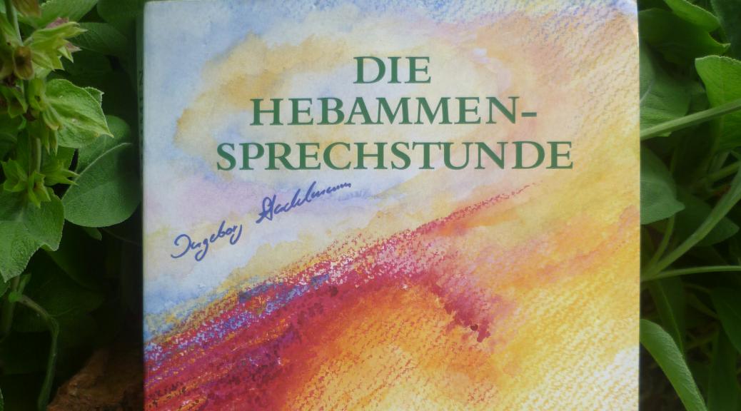 modysBlogTitelbild die Hebammensprechstunde von Ingeborg Stadelmann
